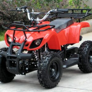 Fox Mini Fourtrax 36V Red Kids Quad