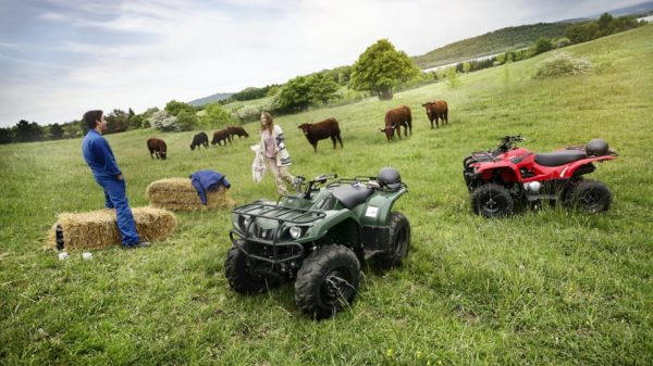 Donegal Quads Yamaha Grizzly 350 4WD