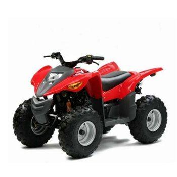 ldy 100cc quad atv for kids