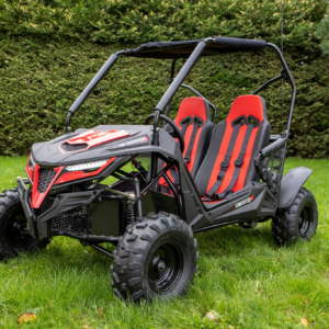 Quadzilla stingray kids buggy