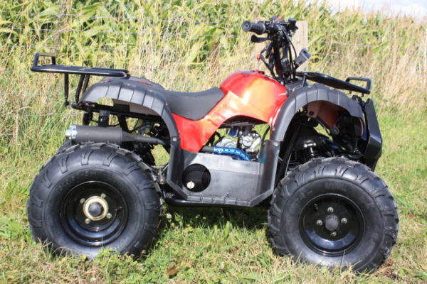 hawkmoto force red 125cc kids farm quad