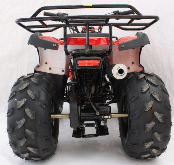 back of hawkmoto 125cc