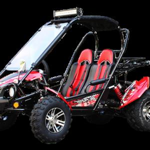 trailblazer buggy