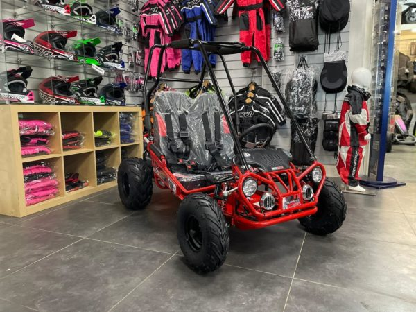trailmaster xrx-r buggy