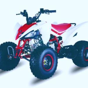125cc pentora quad bike