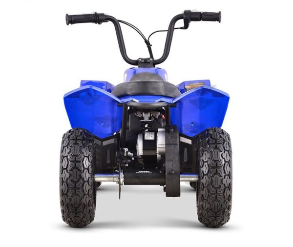Fox Electric Quad Racer