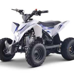 Fox 4T 50cc Kids Quad