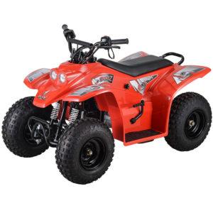 uadzilla buzz 50 junior quad