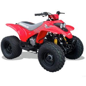quadzilla r100 100cc
