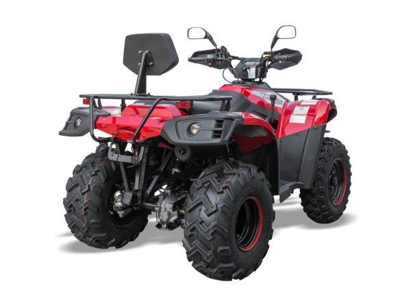 QZ 300 RED REAR