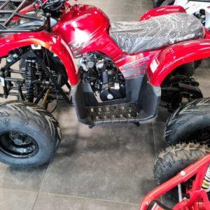 tao red 100cc kid quad